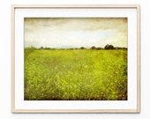 Landscape Photography, Fl...