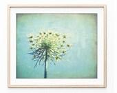Botanical Print, Queen An...