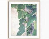 Grape Vine Print, Nature ...