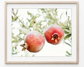 Pomegranate Print, Botani...