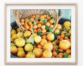 Lemons Photograph, Rustic...