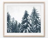 Winter Landscape Print, S...