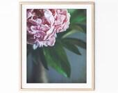 Peony Print, Flower Photo...