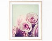 Rose Still Life Photograp...
