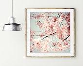 Cherry Blossoms Print, Fl...
