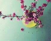 Flower Still Life Print, ...