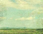 Summer Meadow Landscape P...