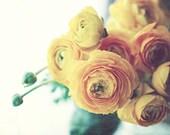 Yellow Flower Still Life ...
