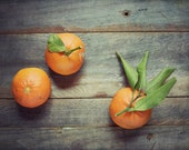 Clementines Still Life, F...