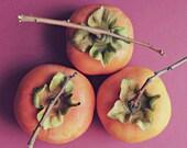 Persimmon Print Fruit Sti...