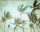 Palm Trees Tropical Wall ...