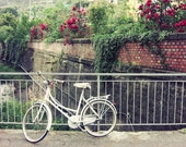 Bicycle Print Italy trave...