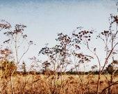 Landscape Photography,  C...