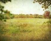 Landscape Photography Oli...
