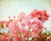 Coral Pink Botanical Prin...