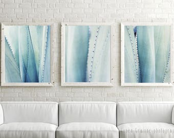 "20% off - Pale Blue Wall Art - Botanical Art Prints - Minimal Pale Blue Agave Plant -  Abstract Nature Photography 8x10 ""Agave Set of Three"""