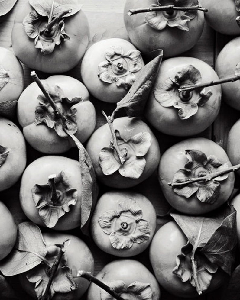 Persimmon print black and white food photography abstract fruit art print gray kitchen dining room wall art persimmon harvest