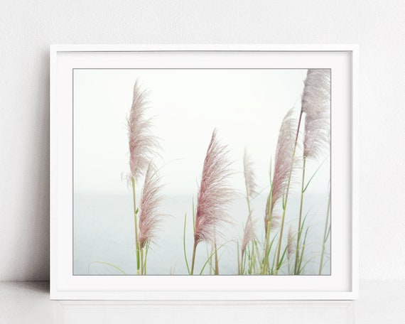 wheat drawing pampas grass print pale pink print