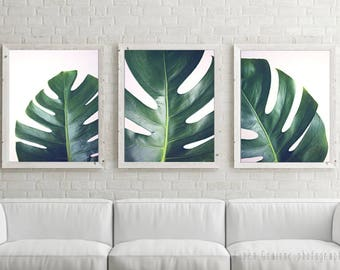 "Set of three prints, tropical leaves wall art, nature home decor, botanical prints, living room decor, photography set ""Ceriman Leaves Set"""
