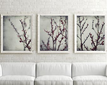 20% off - Botanical photography, print set of 3, gray wall art, burgundy wine red, nature wall art, living room art - Plum Branches Set