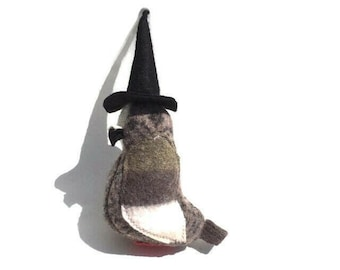 A Little Pigeon Witch