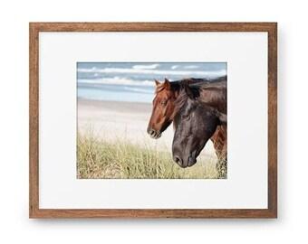 Wild Horse Photography, OBX Horse Print or Canvas, Outer Banks Photograph, Stallion, Ocean, Coastal Photo, Beach House Decor - The Wild Pair