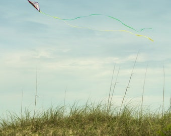 kite flying teal sky wind breeze sea oats clouds windy soaring cottage beach decor - Flying
