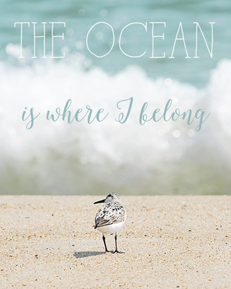 Inspirational Quote Ocean Photography Typography Text image 0