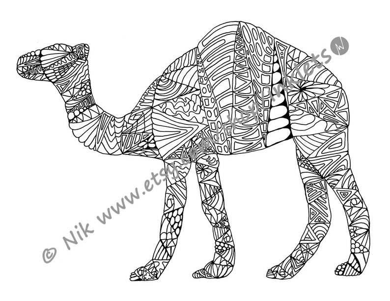 camel coloring pack 4 designs with template camel digi etsy rh etsy com