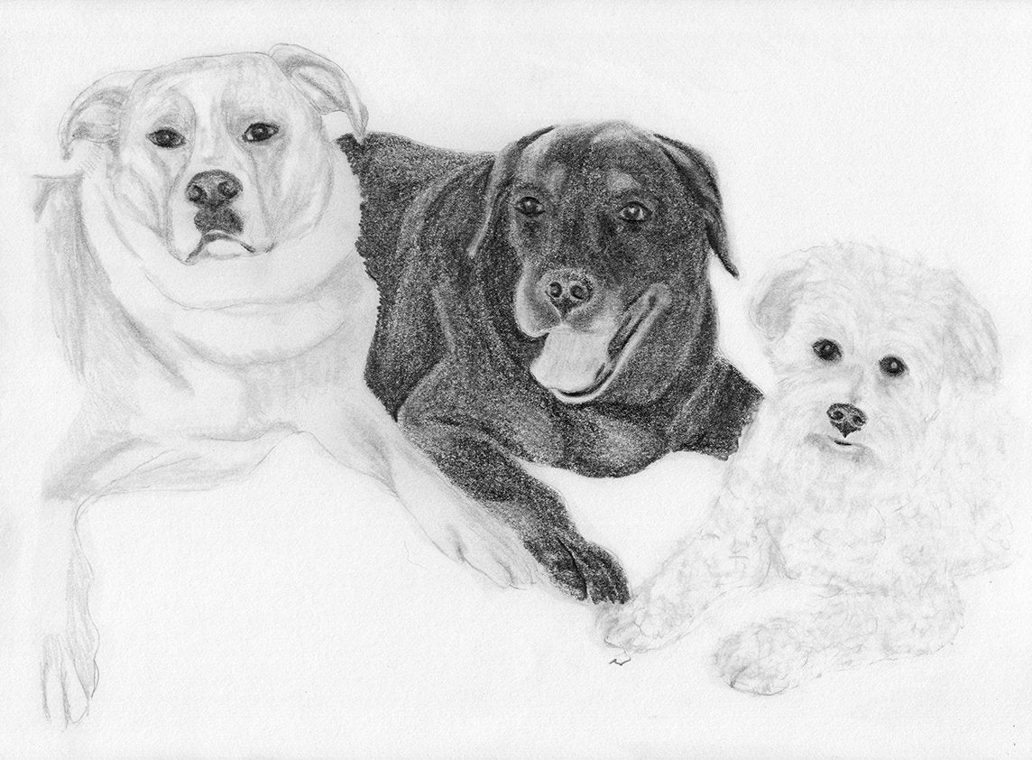 Pet portrait custom dog art sketch from photo pencil sketch digital file personalized pet art pet memorial dog drawing inklets
