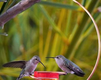 Copper Hummingbird Feeder, Bee-Proof, Drip-Free, Version II