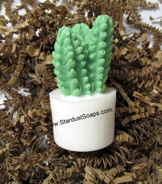 Cactus Soap - Succulent, Handmade, natural soap, Birthday, gardener, self care, Christmas, packaged Gift Soap