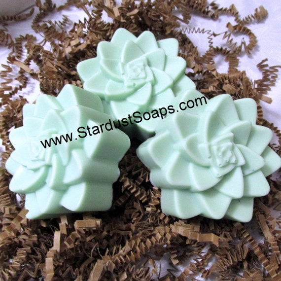 Succulent Soap -handmade. natural soap,  gift soap, fresh, clean, lots of lather, all skin types, self care, skin care, Christmas