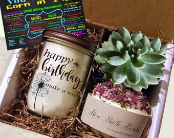 50th Birthday Gift 1968 Handmade Soy Candle Succulent Grown In Our Greenhouse Rose Soap Bomb