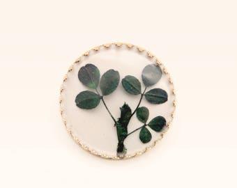 Vintage shamrock pin, Pressed clover brooch, St. Patrick's day, Good luck charm, Vintage leaf brooch