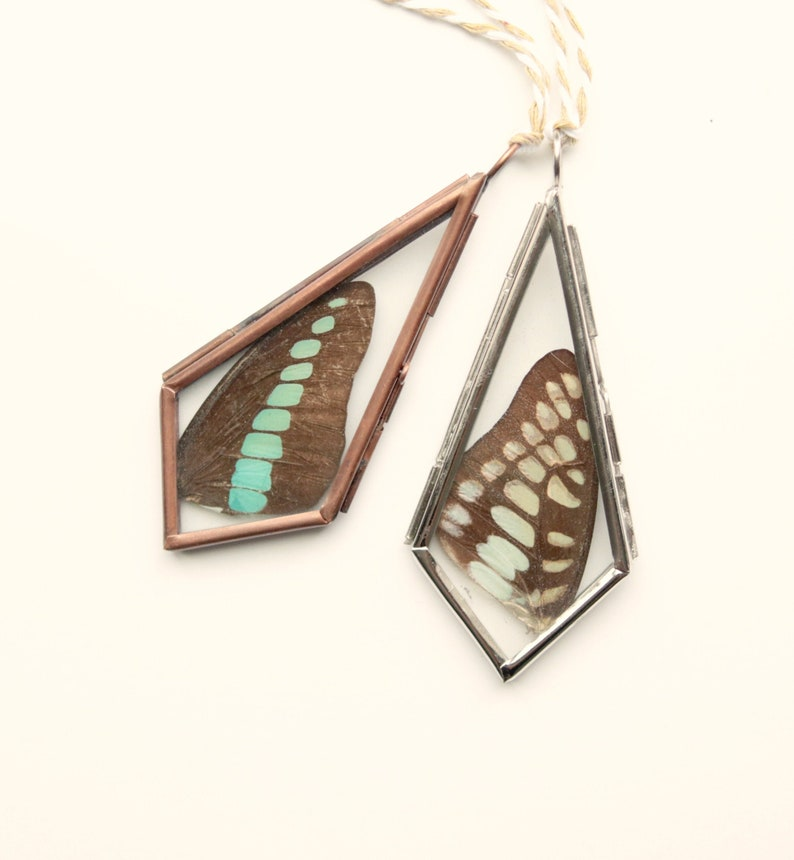 Butterfly wing ornament Real butterfly wings Hinged glass image 0