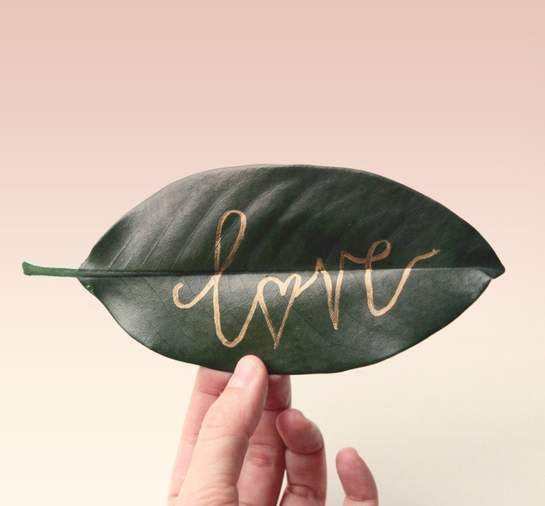 Preserved magnolia leaves  30 leaves natural wedding decor image 0