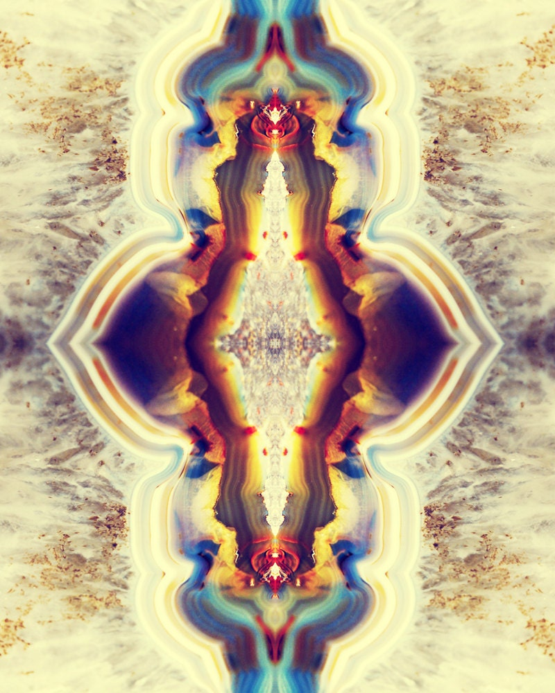 Petrified Wood Flower Photograph 8x10 psychedelic kaleidoscope