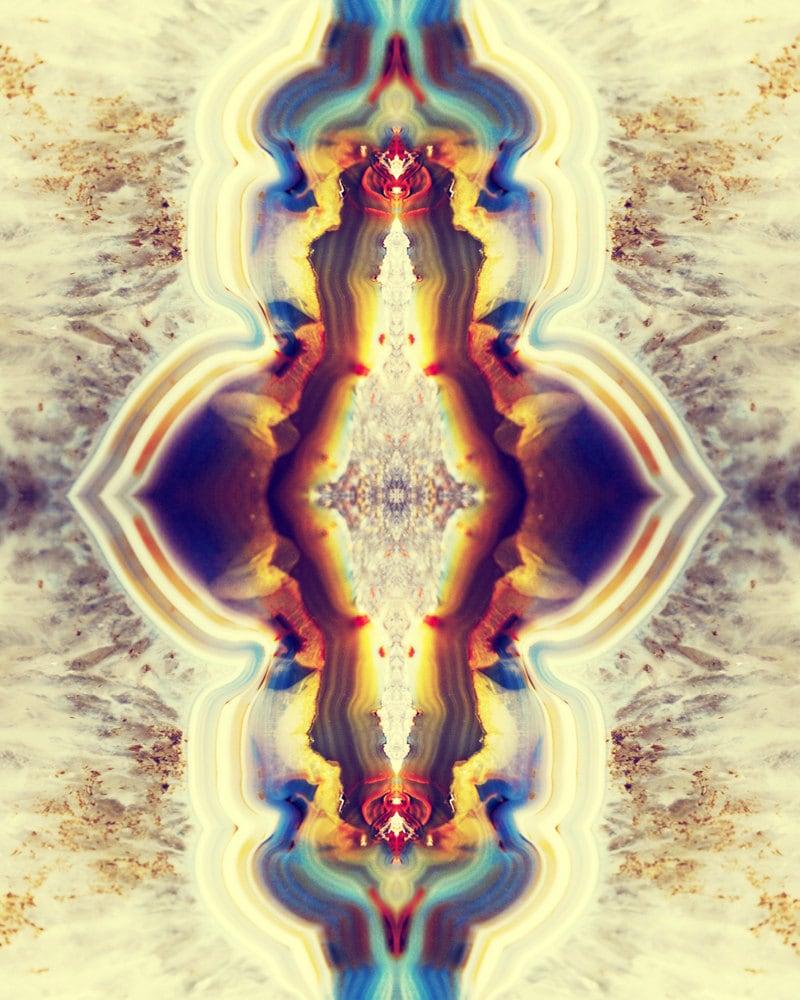 Petrified Wood Flower Photograph 8x10 psychedelic kaleidoscope | Etsy