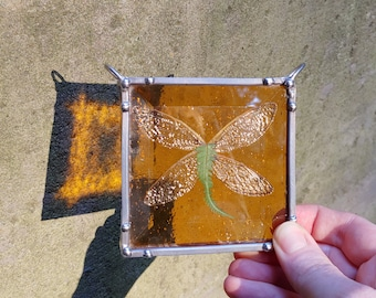Stained Glass Cicada Wings, suncatcher, nature decor, insect wing, brood x, specimen