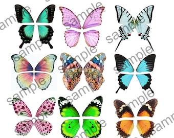 Butterfly Fairy wings for 15 pairs of wings