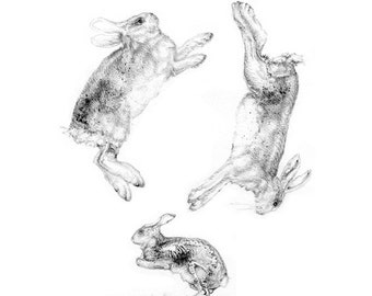 Drawing of Rabbits, Contemporary Art Print by Nicole Margaretten, Endless Drawings
