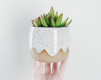Little Cloud Planter - speckled planter white ceramic plant pot scallop design, white stoneware flower pot with wax resist cloud