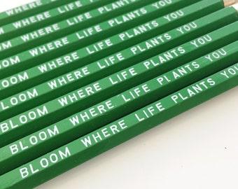 Bloom Where Life Plants You Pencils