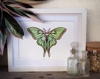 Spanish moon moth hand painted Original hand pulled screen print.
