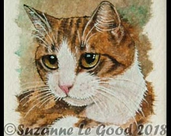Tabby cat, Tabby and white, original art, mounted painting, tea bag, watercolour, acrylics, pen and ink by Suzanne Le Good
