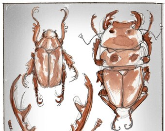 beetels, Greeting Card by Renae Taylor