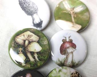 Set of 6 (Mushroom and fairie) pins