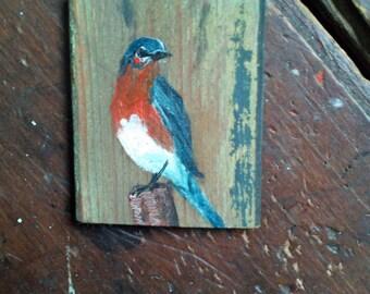 Bluebird on old wood