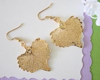 Gold Leaf Earrings, Real Cottonwood Leaf, Real Leaf Earrings, Heart Shaped Leaf, 24kt Gold, Nature, LESM168